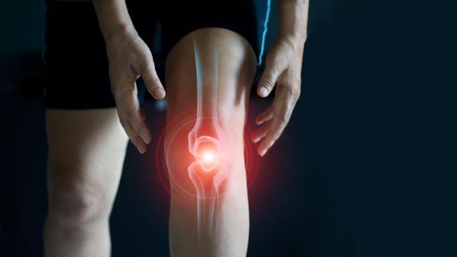 l'articulation du genou